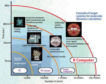 Example of target systems for molecular dynamics calculation